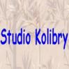 Studio Kolibry Volketswil logo