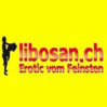 Libosan Baden-Dättwil, Sexshop, Aargau